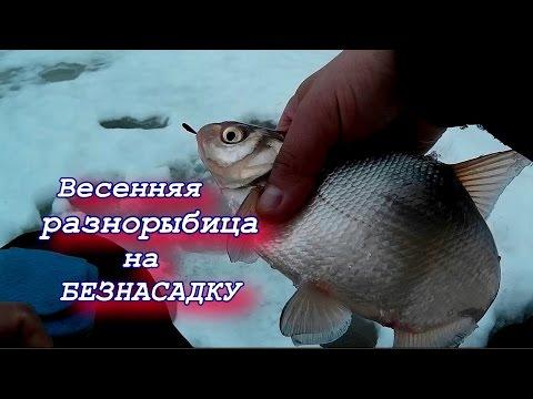ловля крупной рыбы безнасадка часть 1