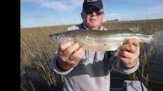 Pesca de Pejerrey en la La Laguna La Gaviota San Cayetano 13 de Mayo de 2014
