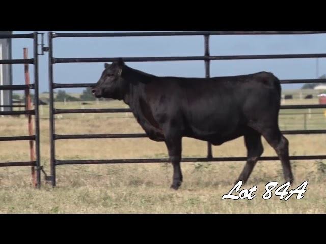 Pollard Farms Lot 84A