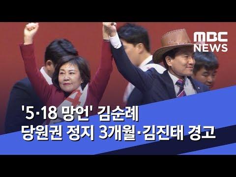 '5·18 망언' 김순례 당원권 정지 3개월·김진태 경고 (2019.04.19/뉴스데스크/MBC)