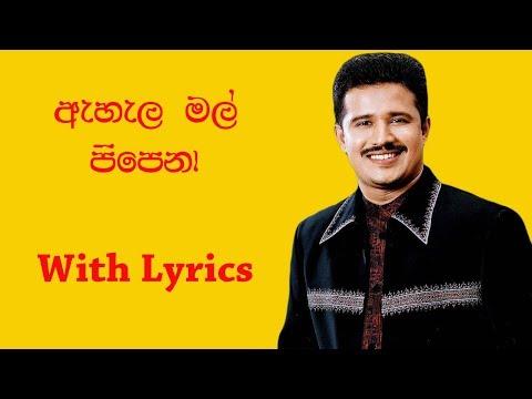 Ahala mal pipena - Chandana Liyanarachchi (with lyrics)