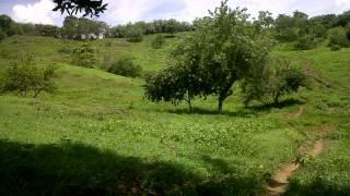 Vamonos Caminando - Banda 19 de Marzo De Laguneta