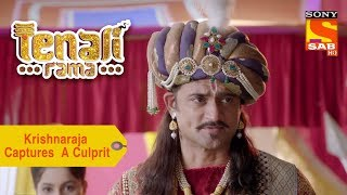 Your Favorite Character | Krishnaraja Captures A Culprit | Tenali Rama