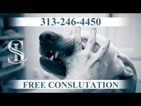 detroit-dog-bite-lawyer-|-(313)-438-4357-|-michigan-injury-lawyers