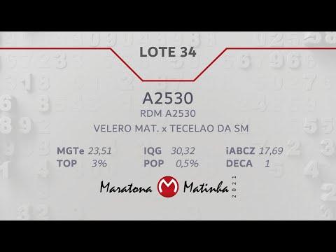 LOTE 34  Maratona Matinha