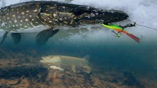 Щука на Балансир | Первый Лед | Зимняя Рыбалка 2017-2018
