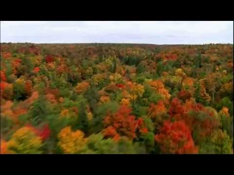 Muskoka, Once Discovered - Never Forgotten.mov