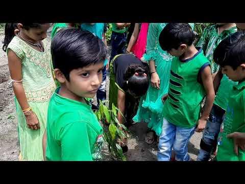 Green Day Celebration in Vision Public School