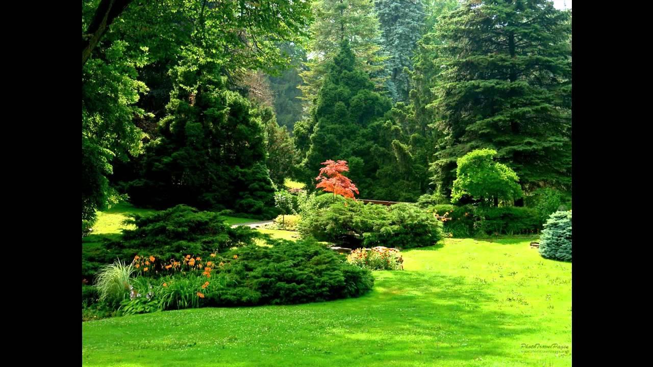 Jardins proibidos paulo gonzo hd youtube for Arthouse jardin wallpaper