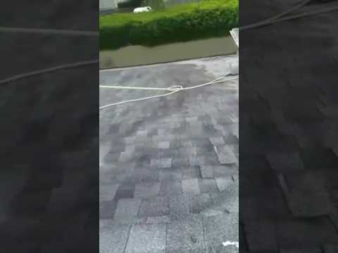 How to clean Shingle roof with Chemical.