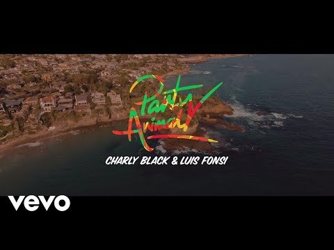 Charly Black, Luis Fonsi - Party Animal