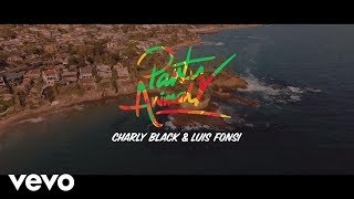 Смотреть клип Charly Black, Luis Fonsi - Party Animal