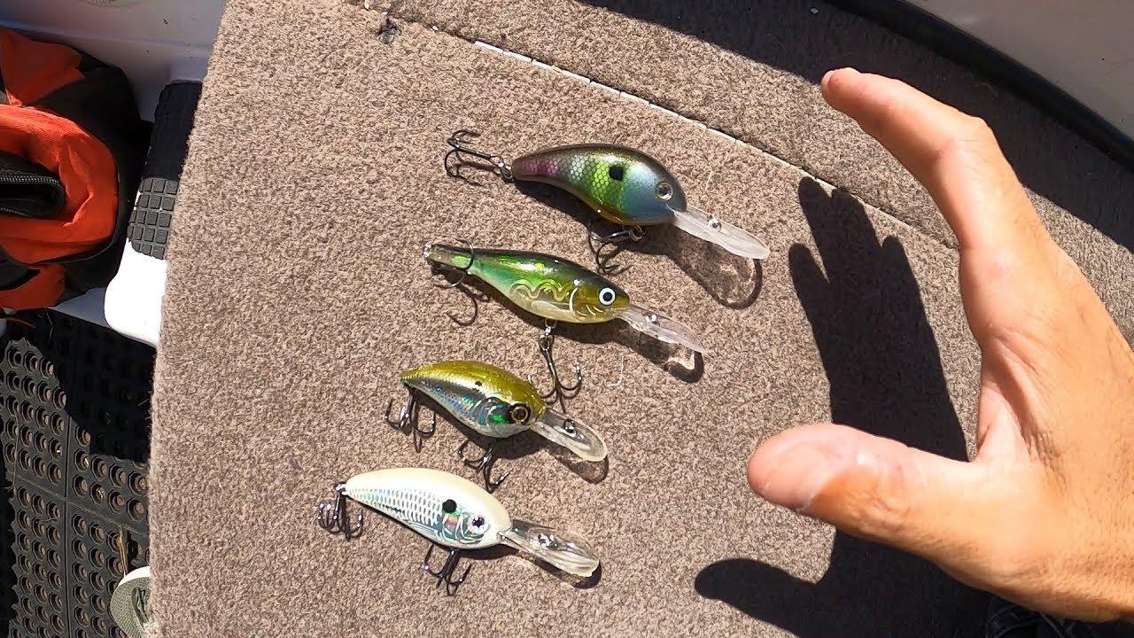 Como Usar un CURRICAN o CRANKBAIT | Pesca de LOBINA