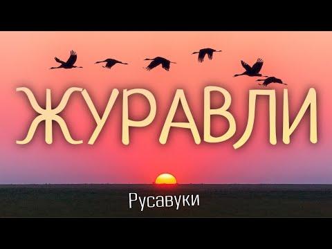 Христианские Песни - Журавли - Русавуки