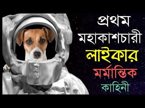 লাইকার মর্মান্তিক কাহিনী | The mystery of Laika revealed  In Bangla | The Space Dog Laika Bangla