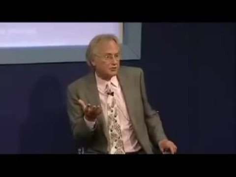 Intelligence As By-Product Of Evolution