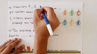 Besinler ve Özellikleri 2/4.Sınıf Fen ve Teknoloji-Yardımcı Öğretmen