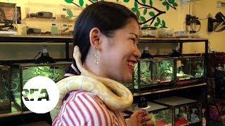 Cambodians Facing Fear at Reptile Café | Radio Free Asia (RFA)