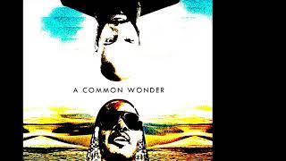 Common & Stevie Wonder - Living For The Chi City