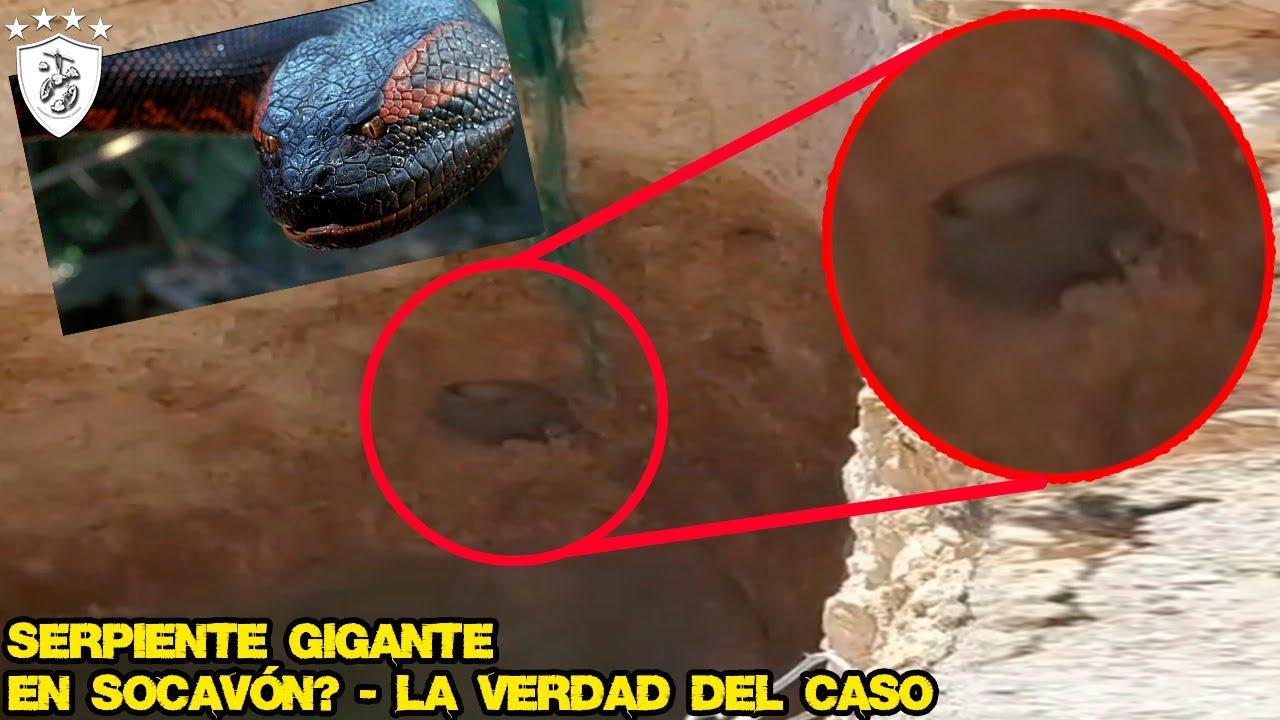 Serpiente Gigante en SOCAVÓN? - La Verdad Del Caso