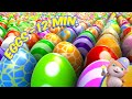Surprise Eggs - Looi the cat | Learn English with Looi | Compilation