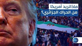 مراسلنا في واشنطن: أمريكا ترغب في استمرار الحراك الجزائري بعد استقالة بوتفليقة