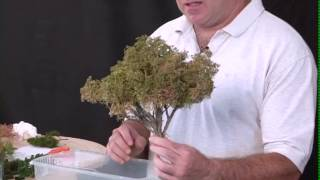 Making Sage Brush Trees