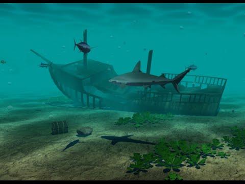 Underwater Scene - OpenGL - YouTube