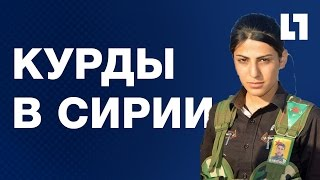 Курды в Сирии!