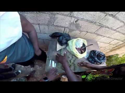 Buying a pound of weed in 9mile Jamaica, gopro