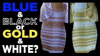 What color is THE DRESS?? Blue & Black or White & Gold?? #TheDress