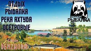 Русская Рыбалка 4 Река Ахтуба Осетровые Озеро Янтарное Карп denzhora russianfishing4