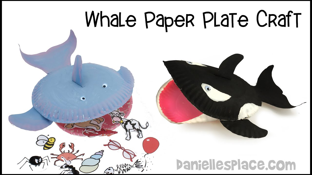Paper Plate Whale Craft  sc 1 st  YouTube & Paper Plate Whale Craft - YouTube