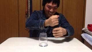 【キュリオスティコーラ】ジジジジンジャーーー!!なのにコーラ。。 ハーレークイン症 検索動画 25