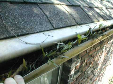 Clog Free Gutter Guard Protection Review Chicago Youtube