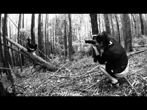 Hunting Season - Joe Knott & Beau Taplin
