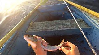 "Рыбалка на реке Ангара. Ловля хариуса на настрой ""Балда""."