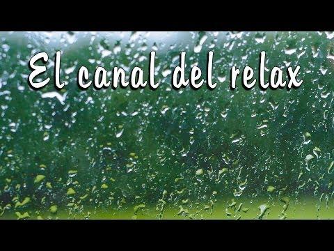 3 HORAS DE SONIDO NATURAL DE LLUVIA CON TRUENOS LEJANOS-3 HOURS  RAINFALL WITH DISTANT THUNDER. 🎧