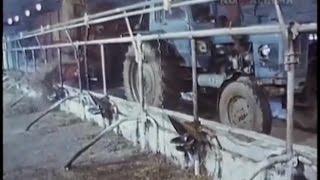 1987 год. Подготовка животноводческих ферм к зиме.