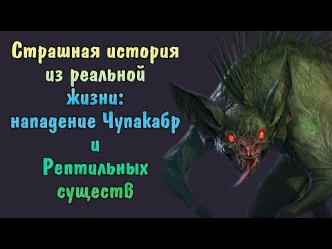 Страшная история из реальной жизни: нападение Чупакабр и Рептильных существ