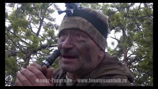 Охота на гусей. Каргополь, весна 2018. День первый
