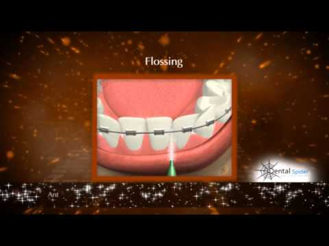 Reception Area Marketing Videos for Dentists