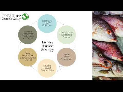 An Introduction to Fisheries Management for Non-Fisheries Ma