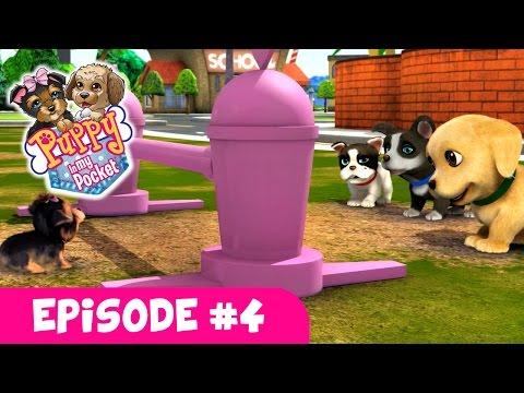 Puppy In My Pocket - Webisode #4