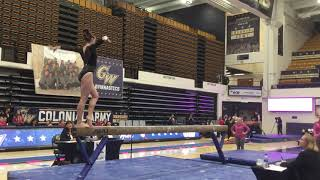 Cover images 2019 W&M Women's Gymnastics - George Washington Quad Meet Highlights