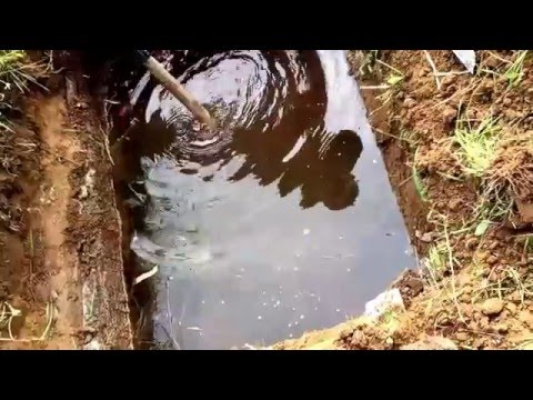 Nanay Exhumation 6