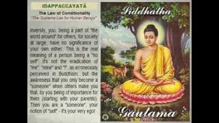 Buddhism vs Gautamaism, Suffering and No   Suffering.