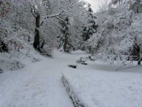 Winter in Lithia Park Ashland Oregon