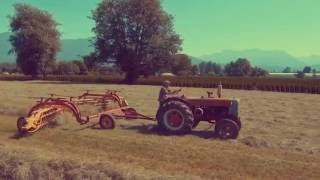 Making Hay on Canada's West Coast With Vintage Antique Tractors || Aerial Views With Drone