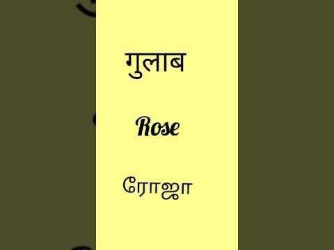 Flowers name in Hindi to Tamil and English   part -45   #shorts   kalasankar